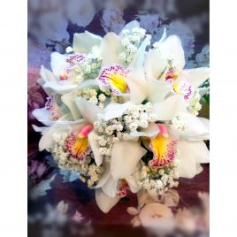 53. Bidermajer Snow Orhid