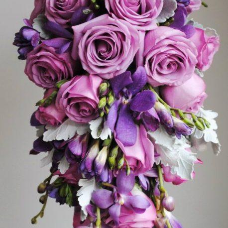 vanda lila ljubičasti bidermajer beoflora