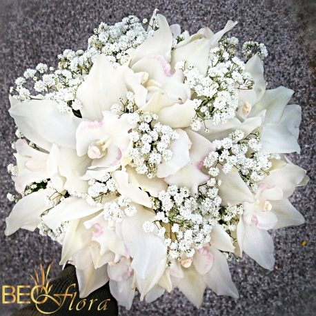 bidermajer beoflora bela orhideja