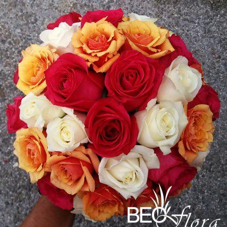 beoflora crvene, narandzaste i bele ruze