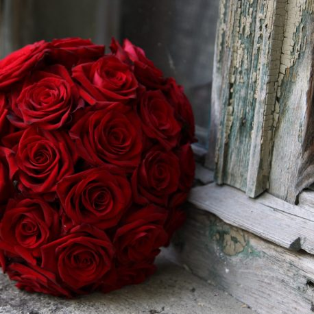 Bidermajer crvene ruže beoflora
