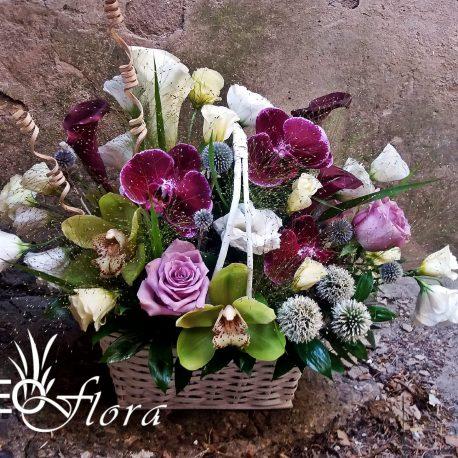 beoflora korpa orhideje, kale, lizijantus