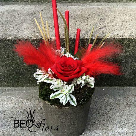 beoflora aranžman crvena ruža
